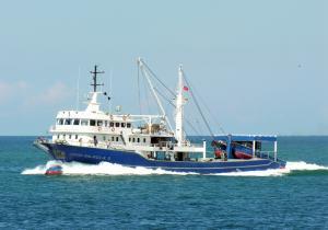 Akgün Balıkçılık 3